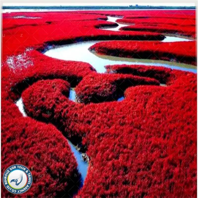 کویر گانسو در تور چین بهروزسیر
