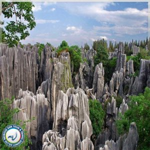 جنگل-سنگی-کان-مینگ-بهروزسیر