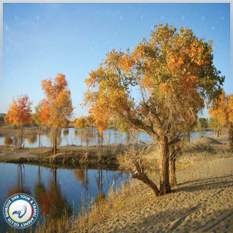 موقعیت-جغرافیایی-و-شرایط-آب-و-هوایی-رودخانه-تاریم---بهروزسیر