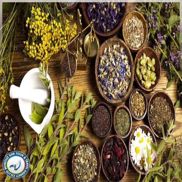 گیاهان-چینی-بهروزسیر