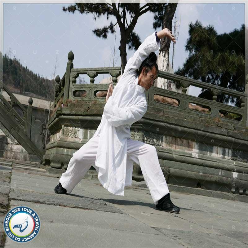 Bagua-Zhang-بهروزسیر