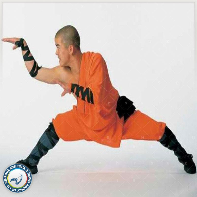 Snake-Kung-Fu-بهروزسیر