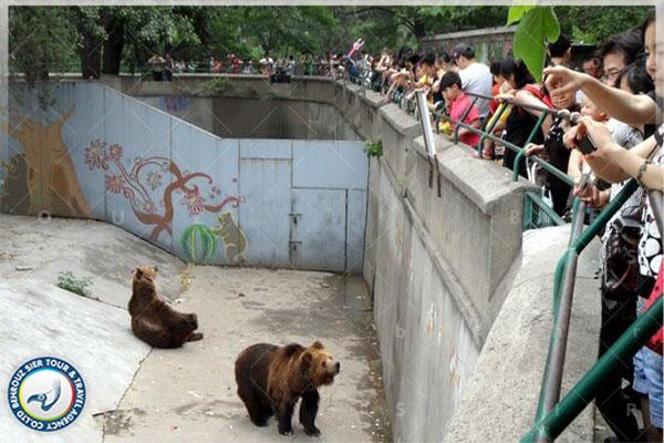 بهترین-باغ-وحش-ها-و-آکواریوم-ها-در-شهر-پکن-بهروزسیر