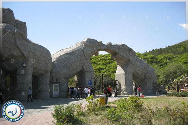 پارک-حیات-وحش-بادالینگ-بهروزسیر