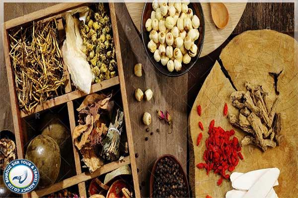 گیاهان-دارویی-چین-باستان-بهروزسیر