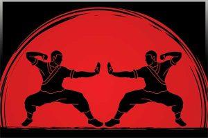 ورزش های چینی رایج در ایران -بهروزسیر